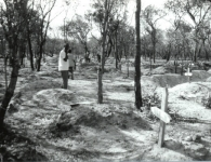 nangweshi-graveyard